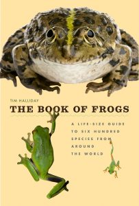 The Book of Frogs lights the internet aflame