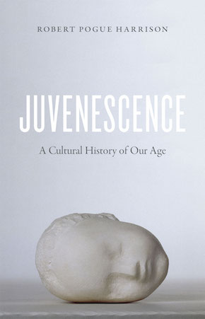 Juvenescence wins inaugural Bridge Award for Non-Fiction